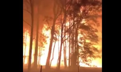 How Fast Wildfires Can Move